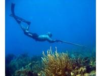 Магазин подводной охоты. Специалисты магазина снаряжения для подводной спортивной охоты Diveforyou делятся опытом