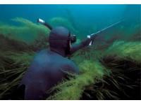 Снаряжение для подводной охоты. Специалисты магазина снаряжения для подводной охоты Diveforyou рассказывают о том, как сделать процесс ловли более безопасным